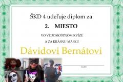 David-_diplom